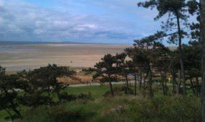 eigen-foto-terschelling-met-strand-en-bomen